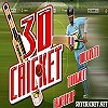 Online 3D cricket game