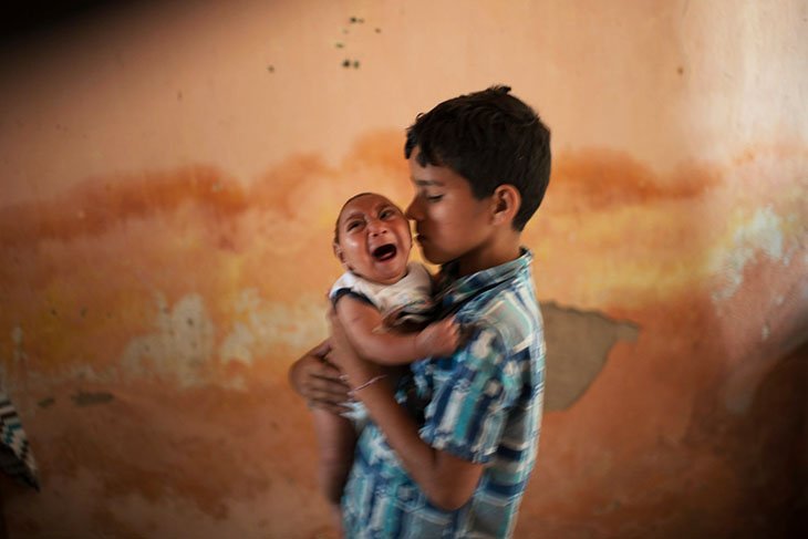 It's Not Zika – Substantial Evidence Suggests Pesticides Really To Blame For Birth Defects