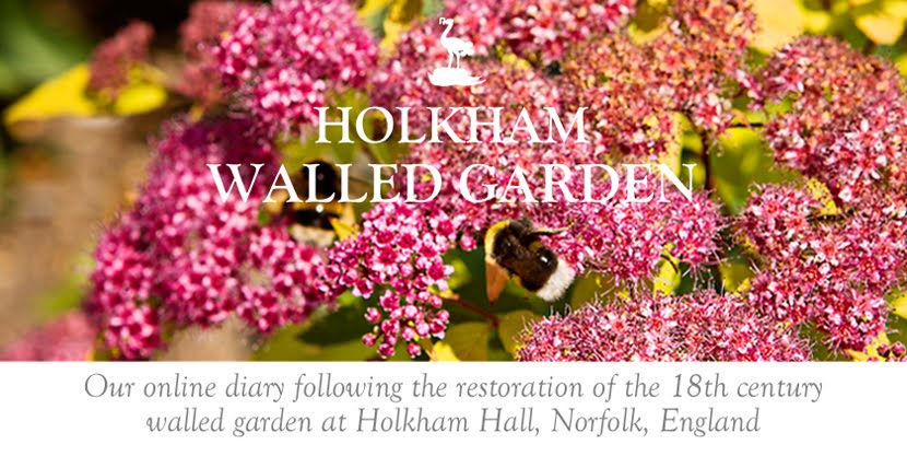 Holkham Walled Garden