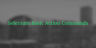 Selenium Basic Action Commands