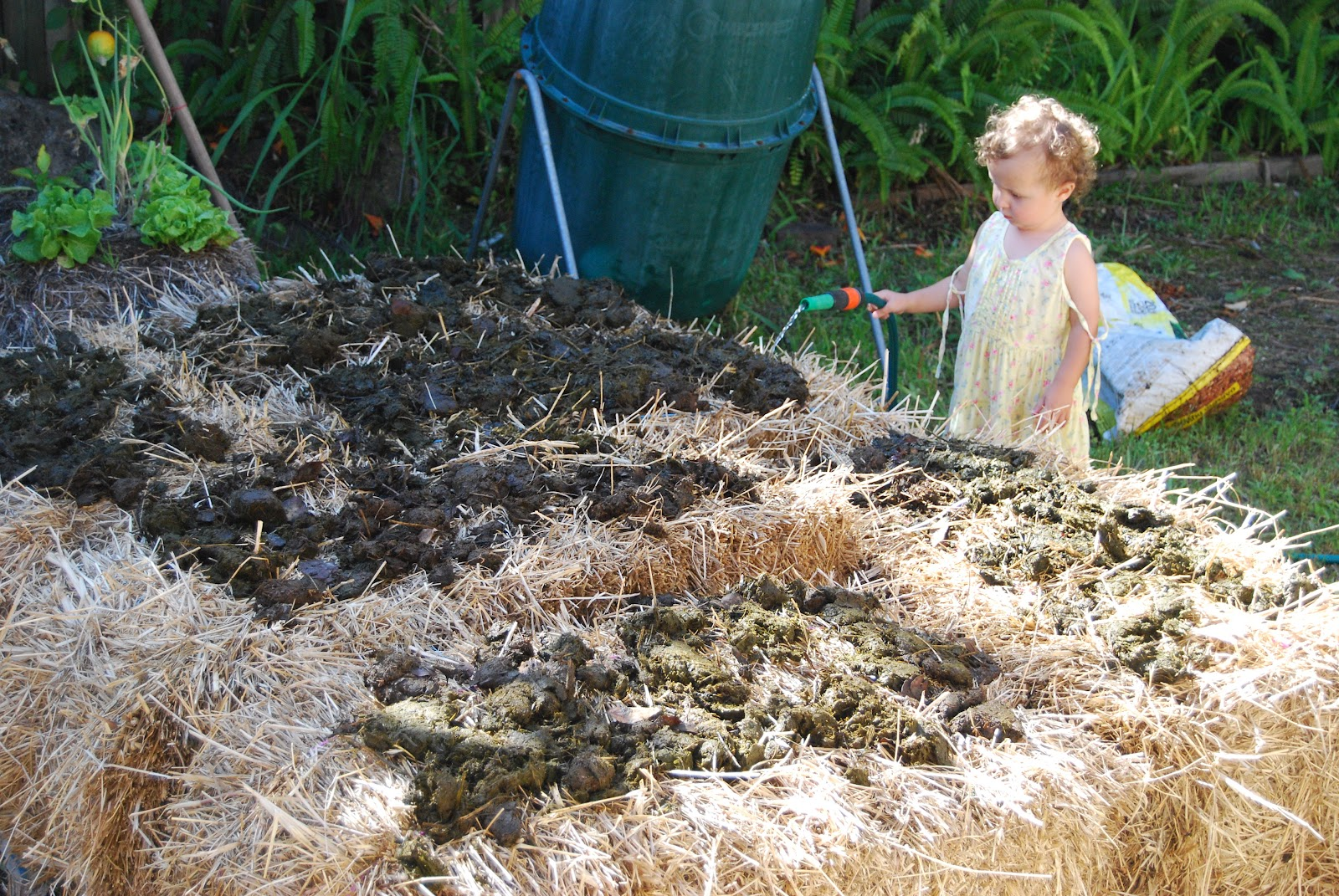 Exceptional Simple, Green, Frugal Co Op: A Beginneru0027s Guide To Straw Bale Gardening