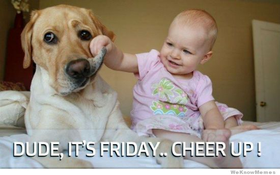 Meme: It's Friday dude, cheer up! Baby makes dog smile. Very funny and cute!