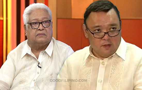 Presidential spokesman mouthpiece, not adviser of Duterte —Lagman