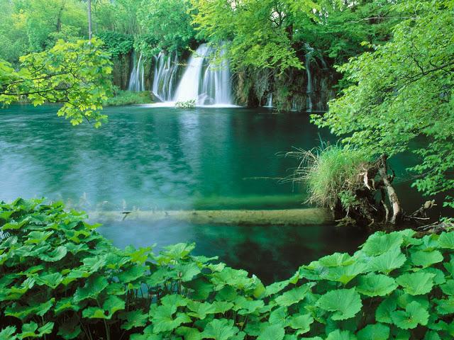 http://4.bp.blogspot.com/-bWGh7e9XTFo/ThyXg2OWCJI/AAAAAAAAASA/zkhQ5QtFpB4/s1600/nature-scenes-wallpaper.jpg