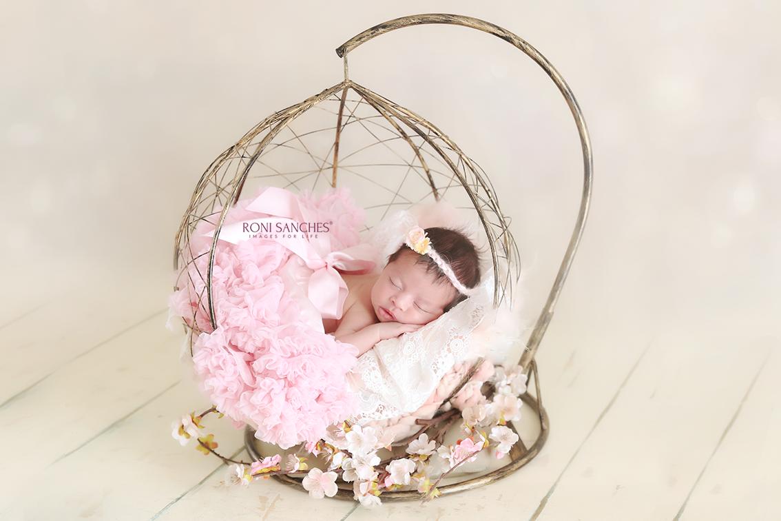 melhor fotografo newborn do brasil, melhor fotografo do mundo newborn, foto estilo anne gueddes, ensaio newborn, newborn sp