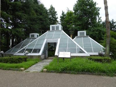 花博記念公園鶴見緑地 メキシコの庭園