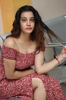 Diksha Panth in a Deep neck Short dress at Maya Mall pre release function ~ Celebrities Exclusive Galleries 125.JPG