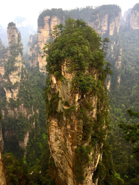 Avatar Hallelujah Mountain in Yuanjiajie area of Zhangjiajie National Park, China