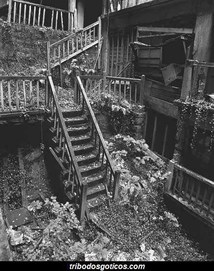 ruinas escada ilha