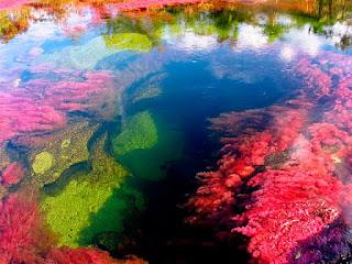Inikah yang di Namakan Sungai Tercantik di Dunia