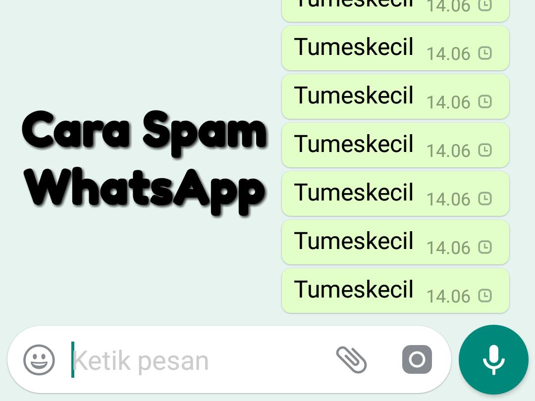 Cara Spam Whatsapp Otomatis Satu Persatu Tumes Kecil