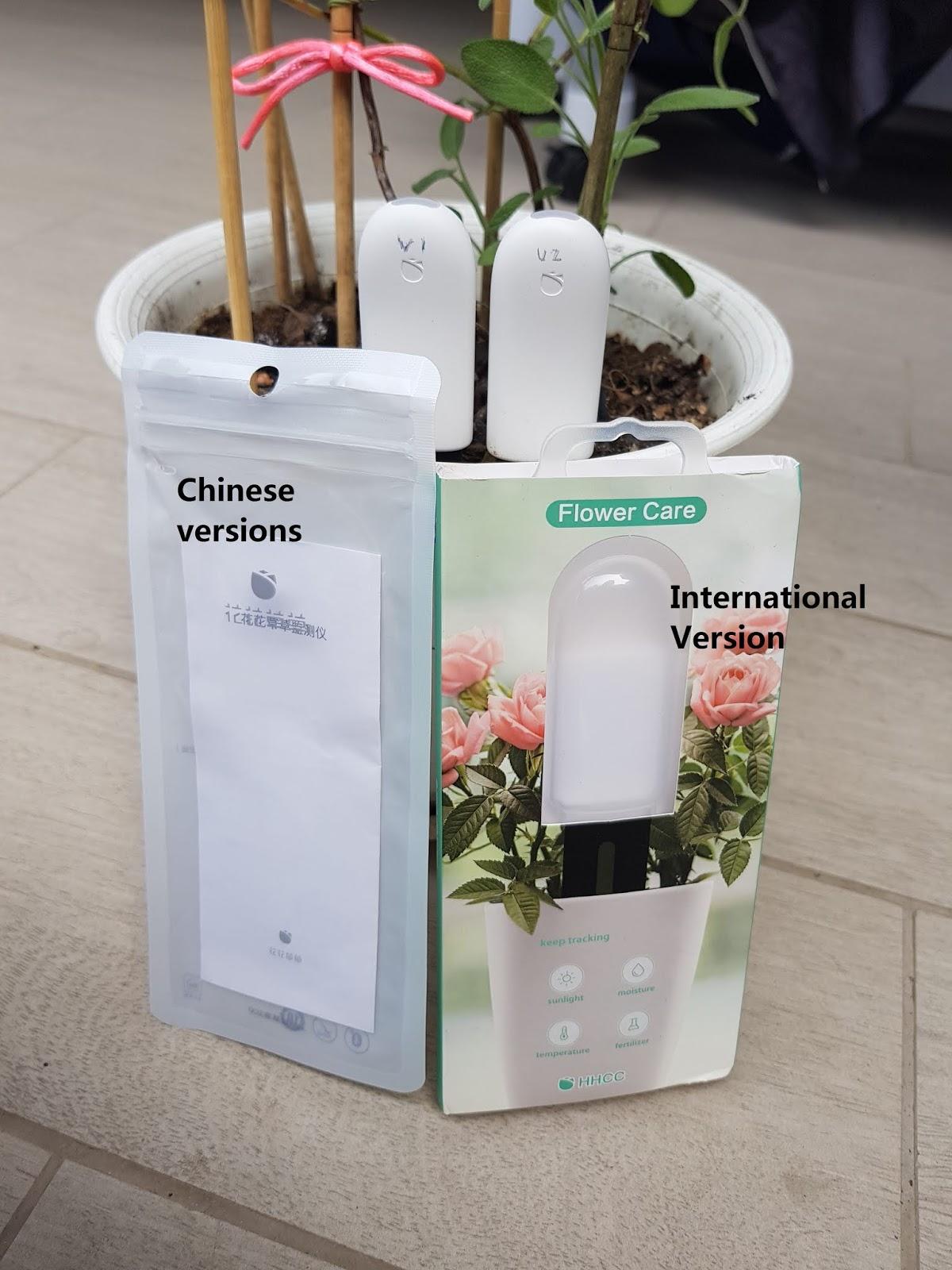 Xiaomi Mi Flora Chinese and International version comparison