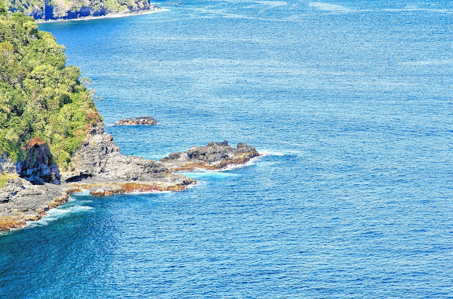 Road to Hana view