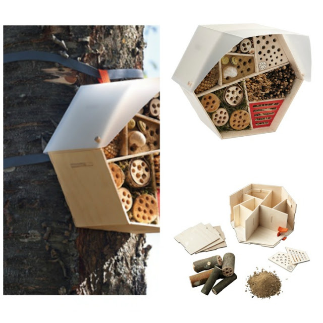 Juguete kit de insectos Haba