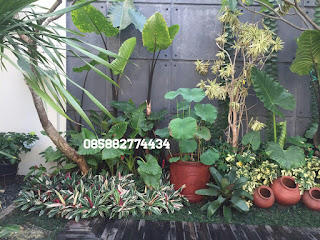tukang taman murah,tanaman hias,tanaman pelindung,kolam hias relif tebing buatat koi,kolam hias air terjun batu alam