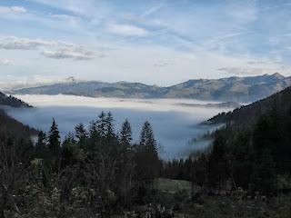 Dem Nebel entstiegen