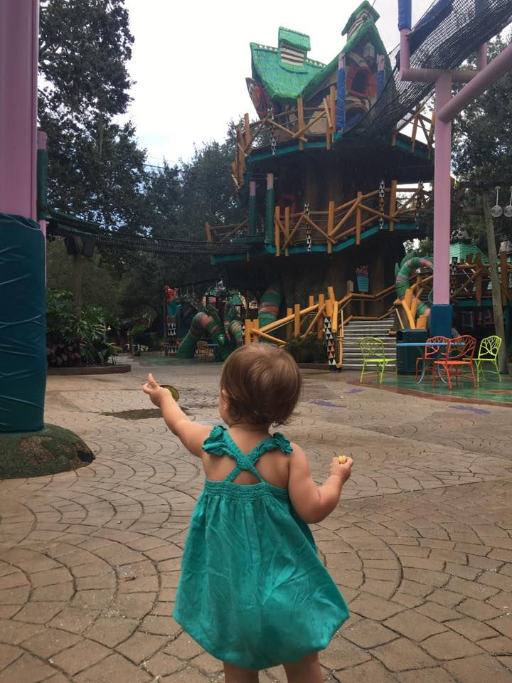 Toddler takes in Sesame Street in Busch Gardens