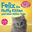 "Welcome in Fall with a Good Book: Cat Lovers Will Love This 4 Books in 1 from the Jenny Dale's Kitten Tales Series - ""Felix the Fluffy Kitten and Other Kitten Tales"" (Review)"