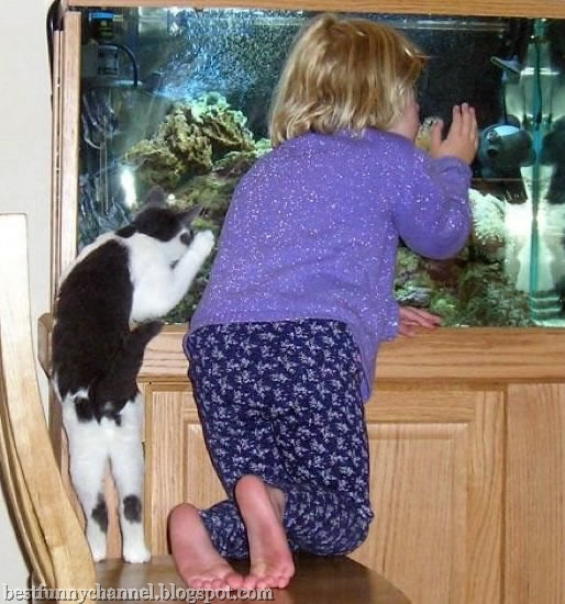 Funny child and cat.