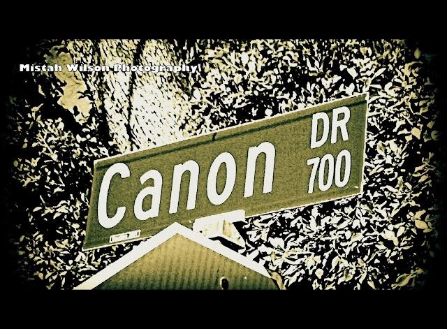 700 Canon Drive, Pasadena, California by Mistah Wilson Photography