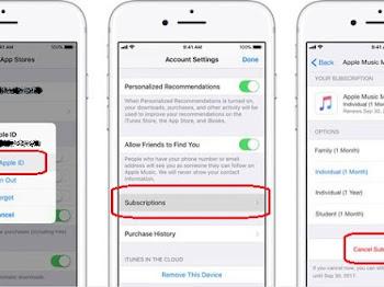 Cara Menghentikan Langganan Apple Music di iOS 12