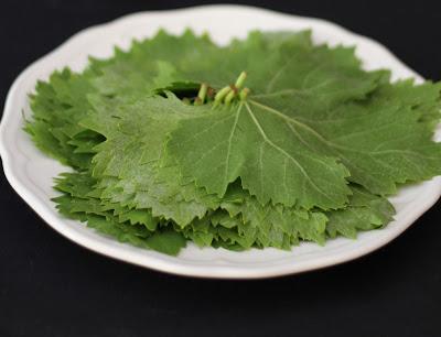 foglie di vite pronte per essere sbollentante