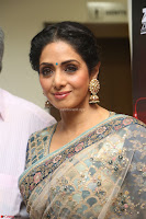 Sri Devi in designer saree stunning beauty at the launch of MOM movie Trailer~  Exclusive 148.JPG