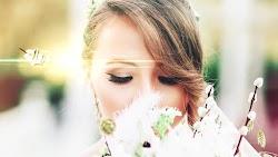 Wedding Slideshow V.1 - After Effects Templates | Motionarray 210989 - Free download