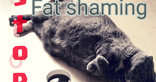 Stop The Fat Shaming and Bullying!