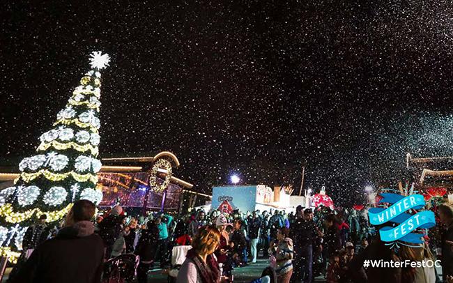 Winter Fest- Orange County