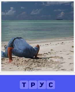 на пляже мужчина головой в песок как трус спрятал