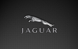Jaguar logo of car