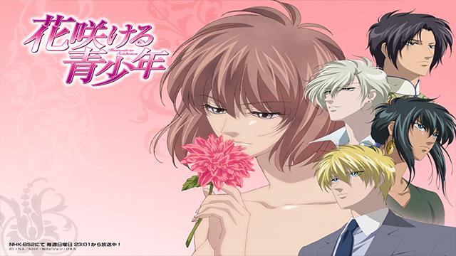 7n 15 Anime Reverse Harem Terbaik