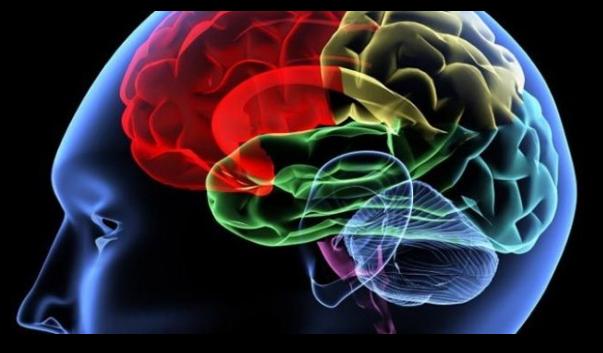 Tipuri de encefalite