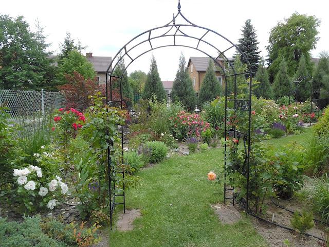 ogród Edyty