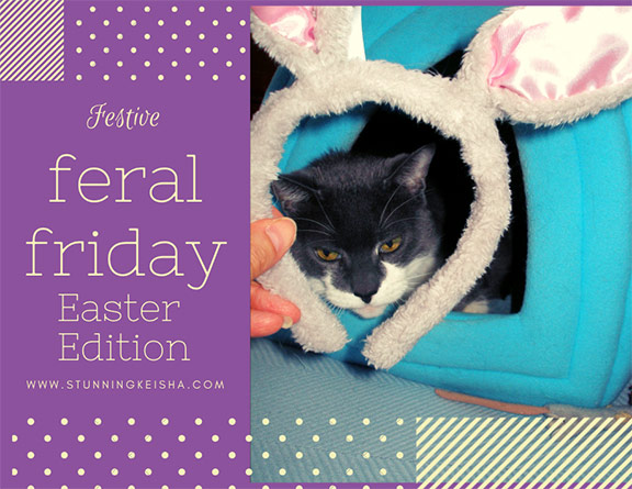 Festive Feral Friday: Easter Edition
