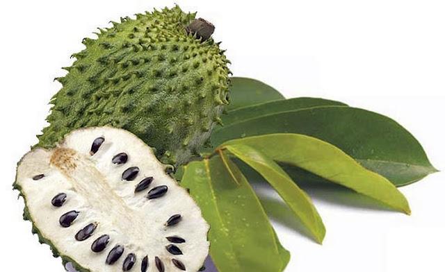 buah sirsak indonesia yang disukai bule