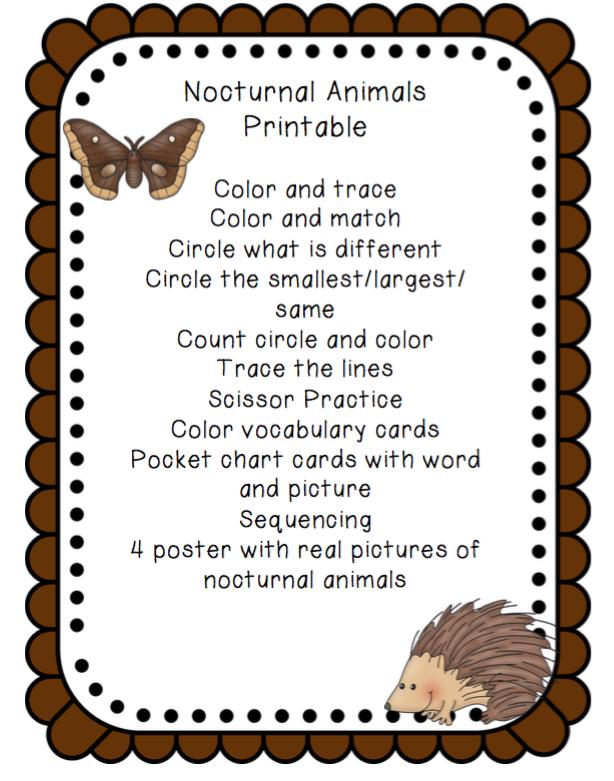 Image of: Kindergarten Httpswwwteacherspayteacherscomproductnocturnalanimalsprintable 932484 Preschool Printables Nocturnal Animals Printable redone Preschool Printables