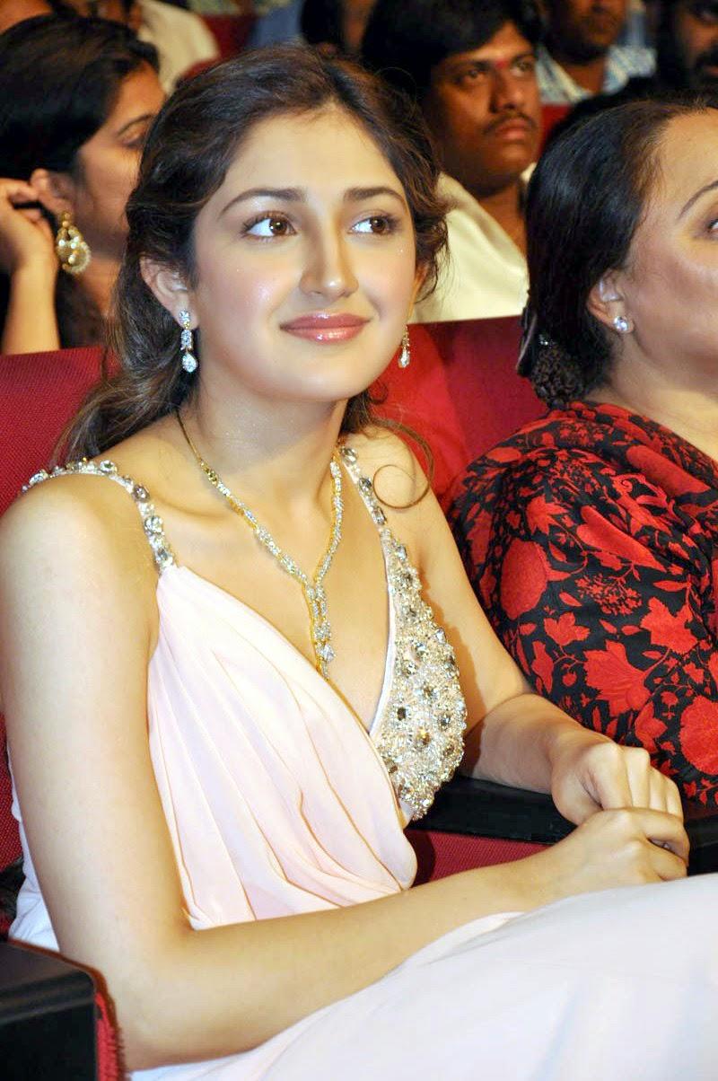 Sayesha Saigal at Akhil Akkineni Debut Movie Launch Stills 07 - Sayesha Saigal Sexiest Images & Photo Gallery|Vanamagan Actress Hot Stills|