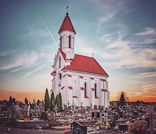 Jakie kwiaty wybrać na cmentarz? Podpowiadam co najlepiej sprawdzi się w Dzień Zmarłych.
