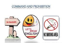 Expressing Commands and Prohibitions