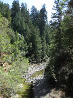 South Fork of the Gualala River viewed from Hauser Bridge, Hauser Bridge Road, Sonoma County, California
