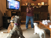 Suki Roth (right), her niece Smokie Roth (the Greyhound, center), and her nephew Auggie Roth (the Foxhound, left), about to get treats from my wife Shirley.