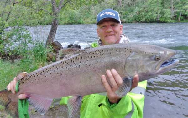 Salmon fishing report for the rogue river rogue river for Rogue river fishing report