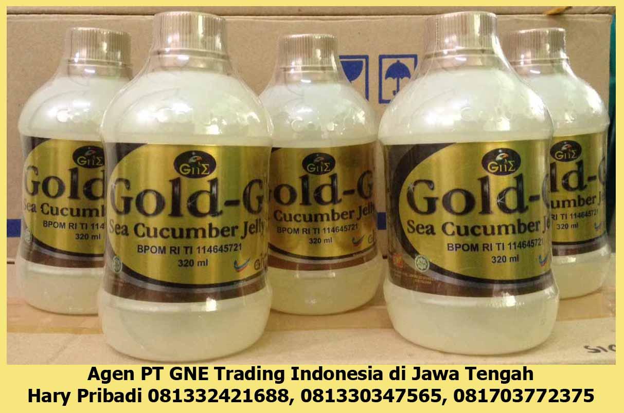 GnE Enterprice Ngalian Semarang