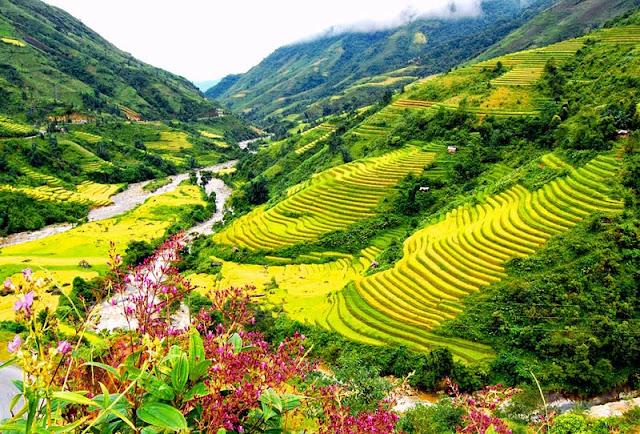 tour du lịch sapa giá rẻ cùng du lịch Minh Anh - MAC travel