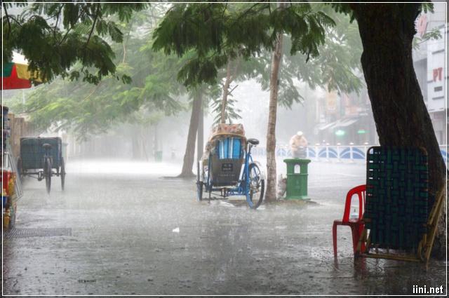 mưa rơi trên phố