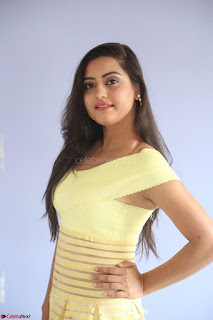 Shipra gaur in V Neck short Yellow Dress ~  064.JPG