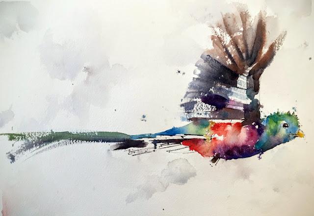 quetzal bird watercolor