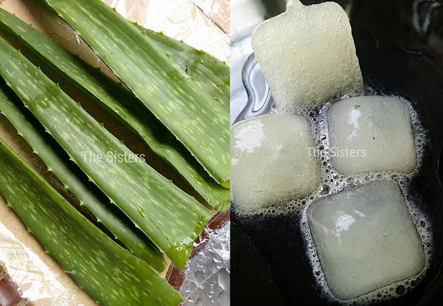 Petua Mudah Gunakan Aloe Vera Untuk Kecutkan Jerawat, Kulit Lembap & Cerah